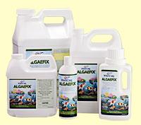 AlgaeFix.jpg