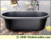 Aquatic Plant Pot photo