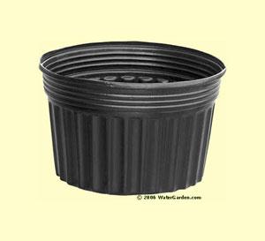 8 x 5 inch Plastic Pot