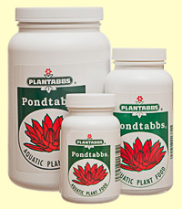 PondTabbs photo